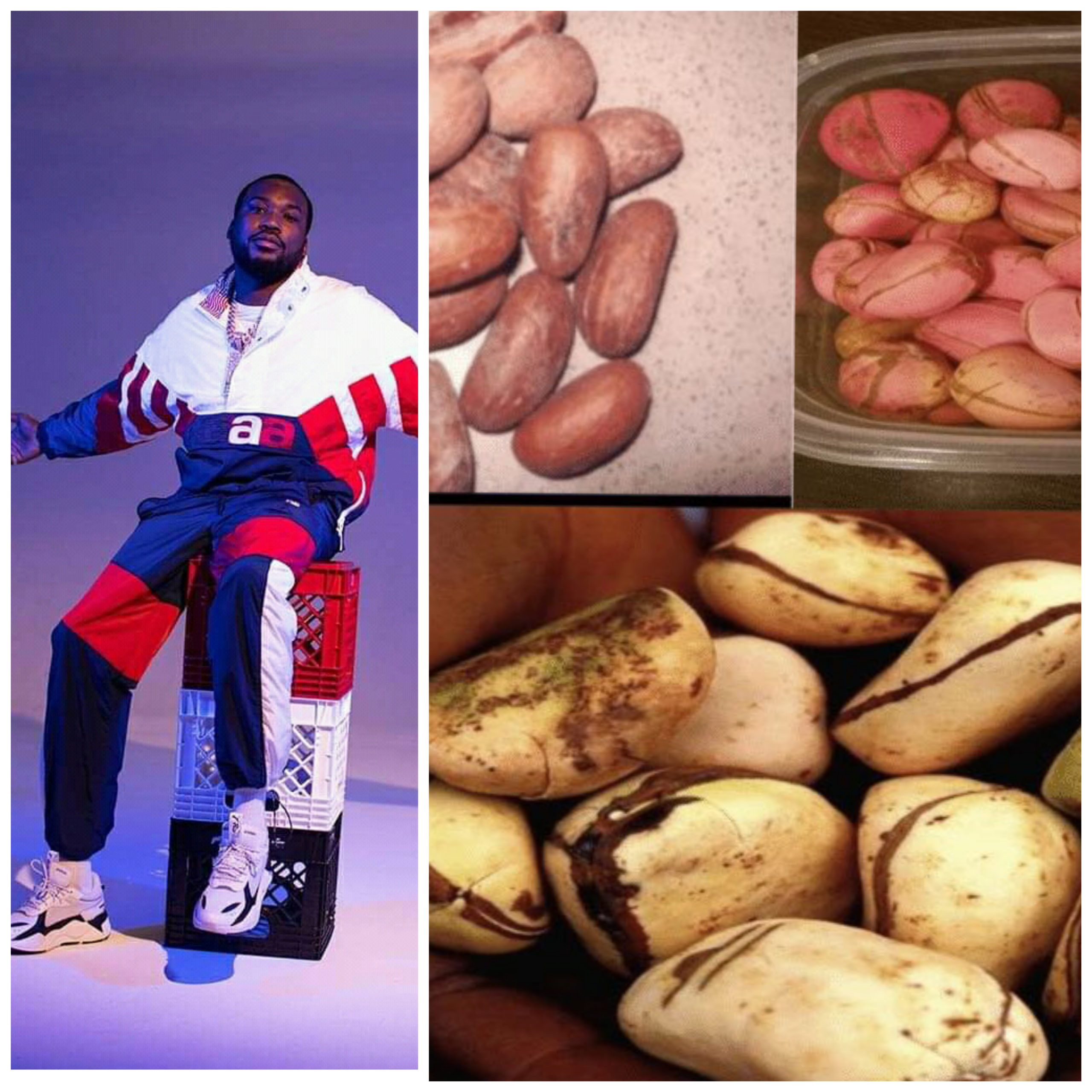 6 Miraculous Benefits Of Bitter Kola Nut That Made American Rapper Meek Mill To Endorse It.
