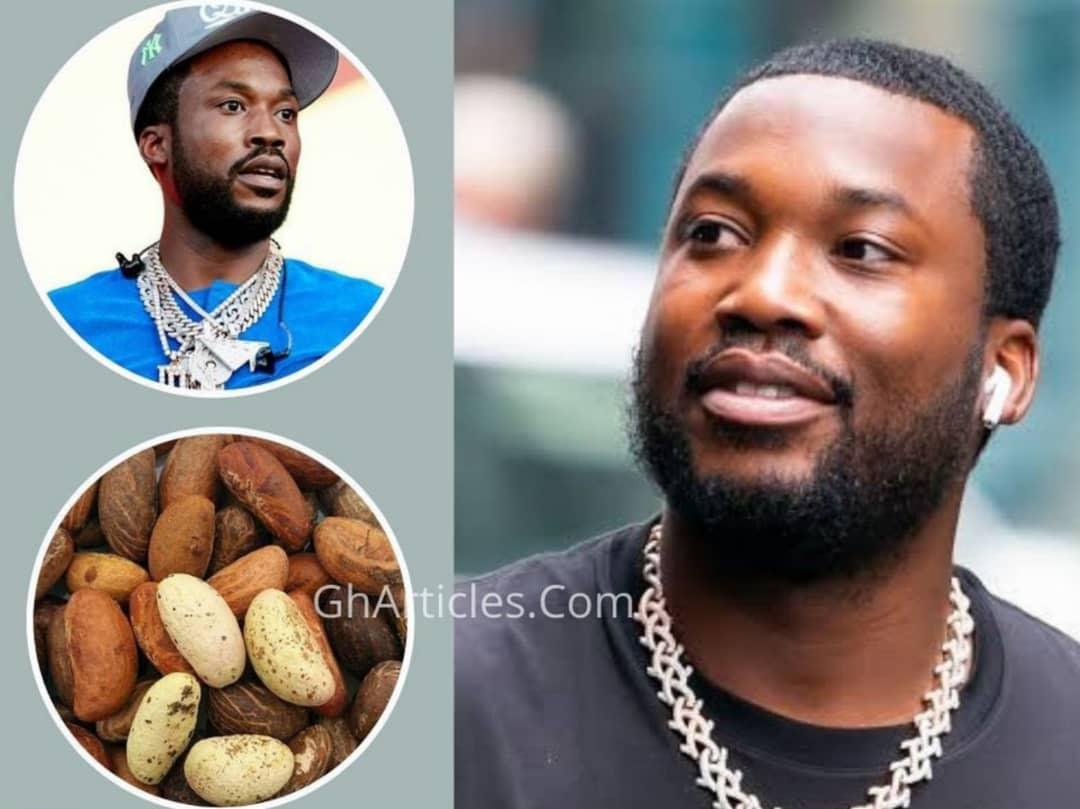 'African Herb Fixed My Stomach Like Magic' - Meek Mill Praises Bitter Kola